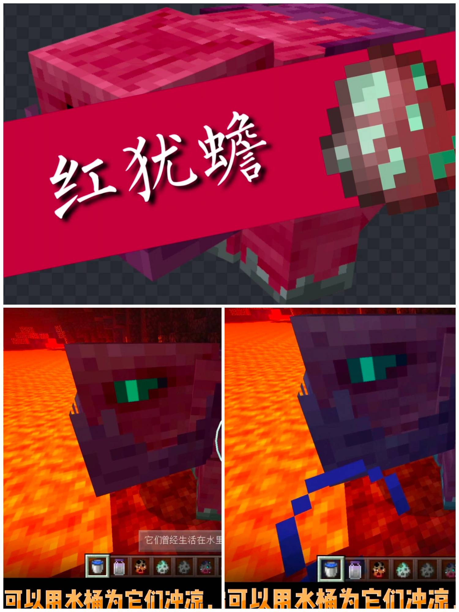 file_1600144051000.jpg